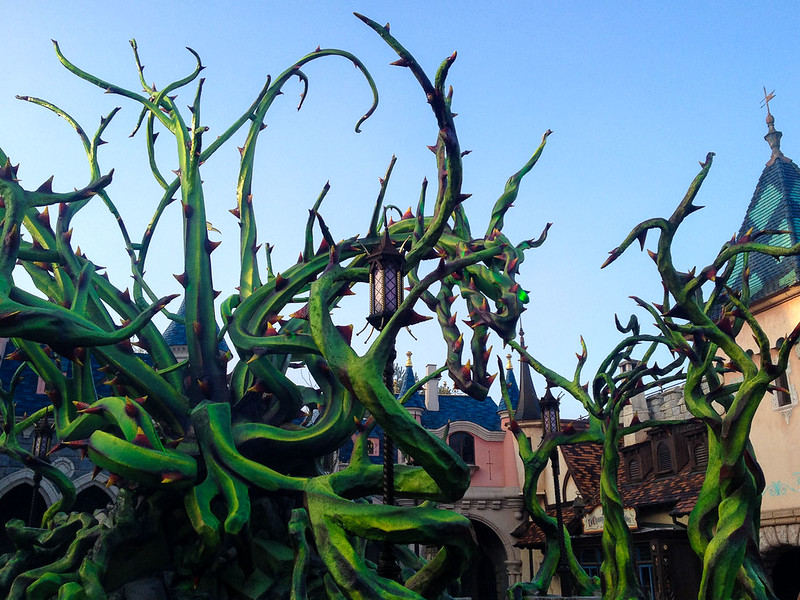 Dragon Bramble in Disneyland