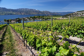 British Columbia's new interprovincial trade agreement with Ontario and Quebec will cut red tape for B.C. wineries and increase market access for the world renowned wines produced throughout the province.