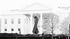 Commemorative Red Ribbon White House 2014 World AIDS Day 50184