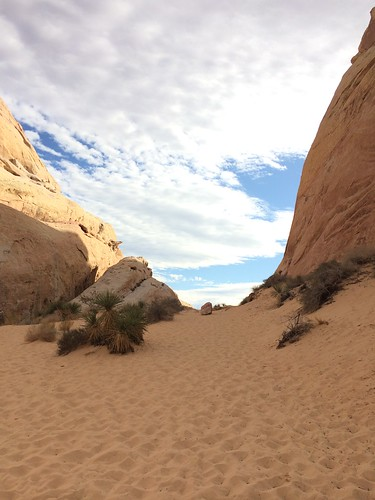 Trailhead: White Domes. Valley of Fire