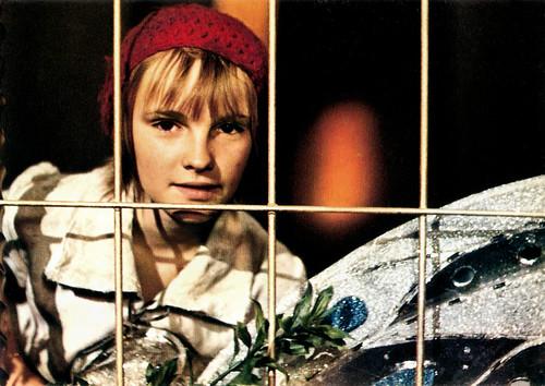 Le Petit Poucet (1972)