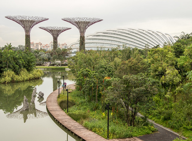 supertrees and flower dome