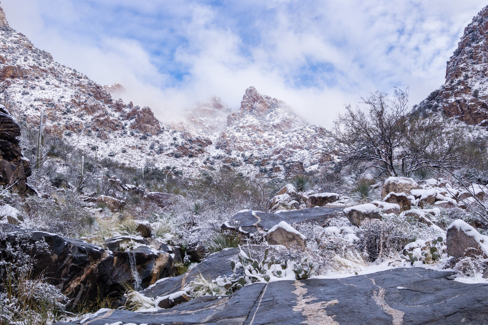 1501 Rock and Snow in Pima Canyon