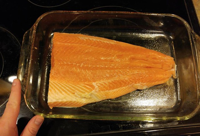 Check out this huuuuuge piece of salmon our neighbors gave us