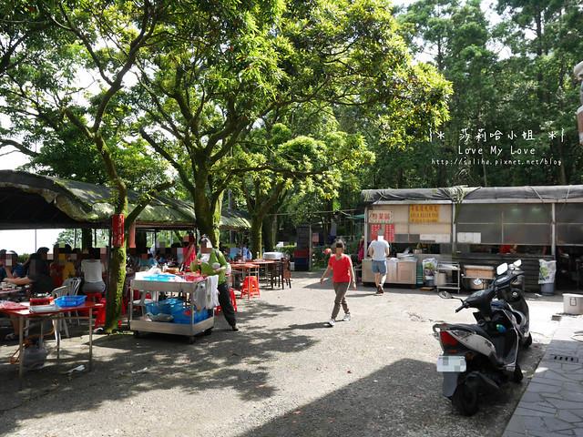 陽明山竹子湖餐廳美食杉木林 (13)