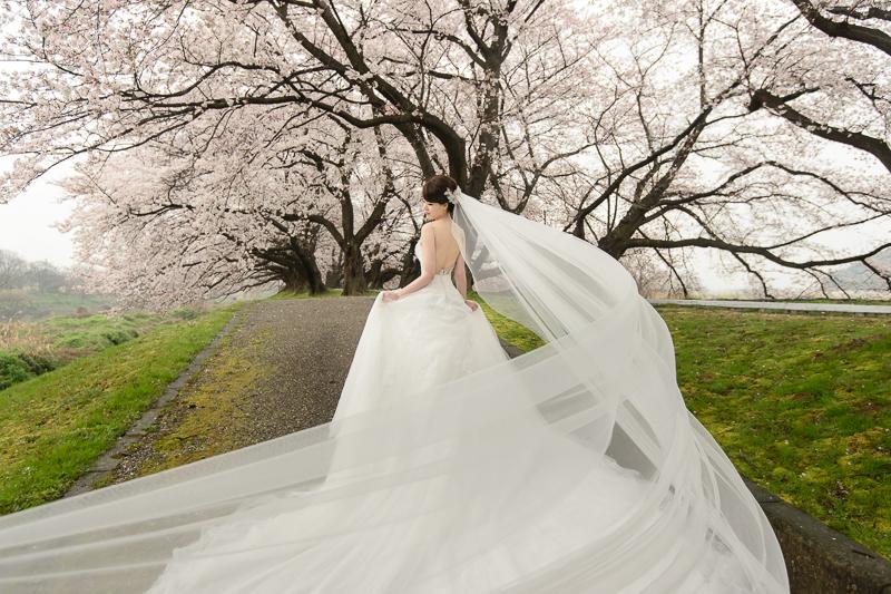 日本婚紗,京都婚紗,櫻花婚紗,新祕藝紋,cheri婚紗包套,cheri婚紗,KIWI影像基地,cheri海外婚紗,海外婚紗,婚攝,DSC_0027