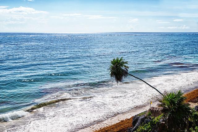 MEXICO - Tulum - Quintana Roo