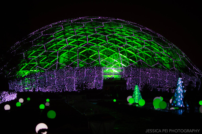 Climatron Lights at Garden Glow St. Louis
