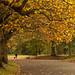 Sefton park walk....... by Digital Diary........