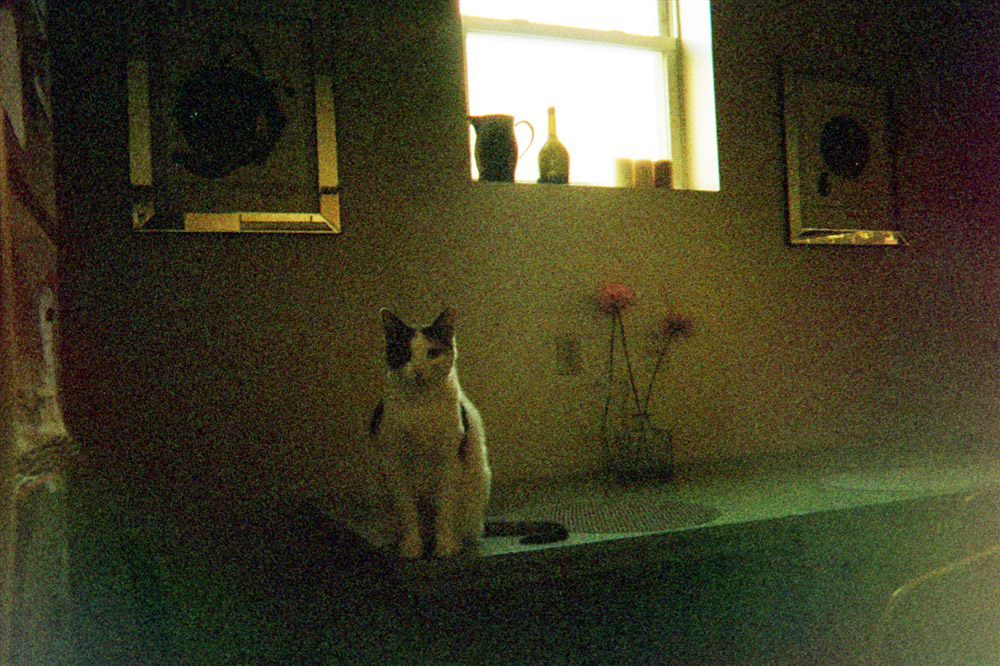 405: Disposable: The City On Film