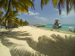 Belize_LaughingBirdCaye20140706_1410-2