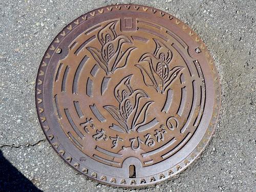 Takasu Gifu, manhole cover 2 (岐阜県高鷲村のマンホール2)