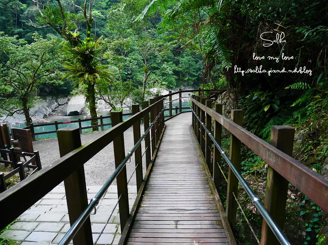 烏來景點內洞森林遊樂區 (24)