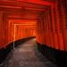 Thousand Torii by Piriya Pete Wongkongkathep