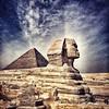 Desde el lado opuesto, la majestuosa Esfinge, a la cual los Mamelucos destrozaron a cañonazos la nariz, y detrás, la Gran Pirámide. Aquí será la clausura del 36 festival de cine de El Cairo.