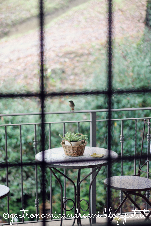 #ptitzelda2014day2 - L'attimo in cui sei davanti alla finestra in cerca di poesia, con la macchina fotografica in mano, e un uccellino si posa proprio lì.