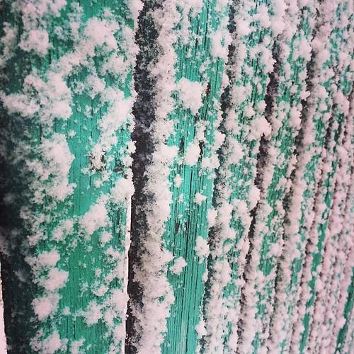snow fence square holidays squareformat mayfair winterholidays whiteandgreen iphoneography instagramapp