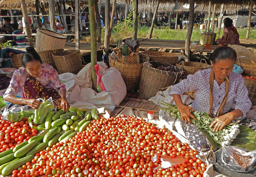 Tomatoes for Sale at the Weekly Market in the Village at the End of Inle Lake (Myanmar)