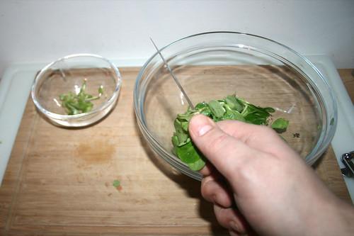 58 - Salat putzen / Clean salad