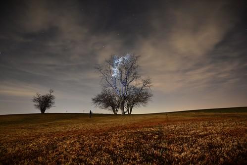 longexposure winter tree beautiful field stars photo nikon long exposure maryland astrophotography d7100 nikond7100