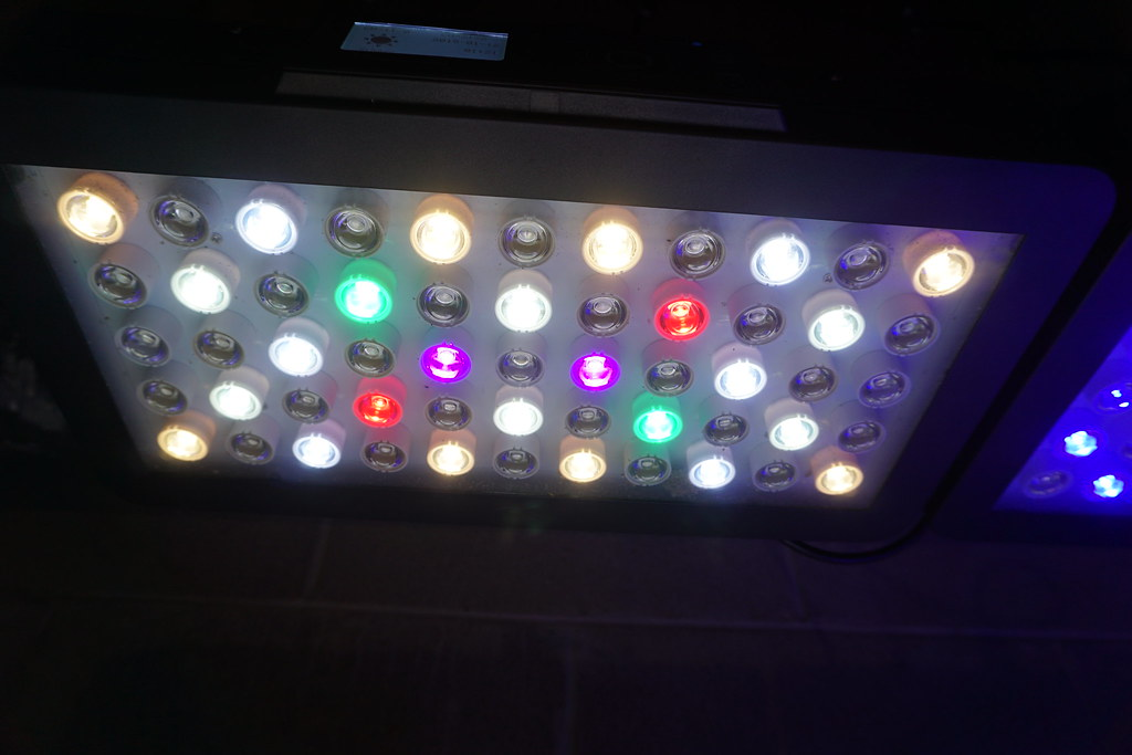 Reef led experiment 1-11-15