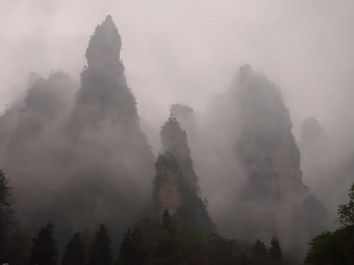 Ambiance brumeuse en arrivant dans le parc