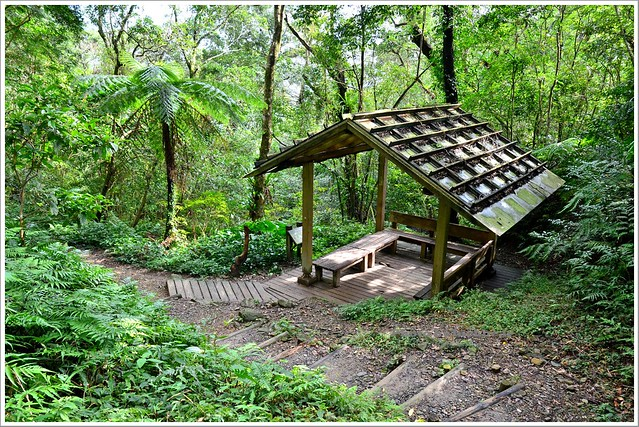 聖母山莊聖母登山步道宜蘭礁溪030-DSC_6769