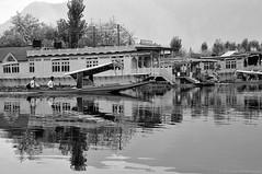 Life on a Lake | B&W photo-essay 3/7