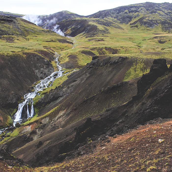 Iceland_Spiegeleule_August2014 023