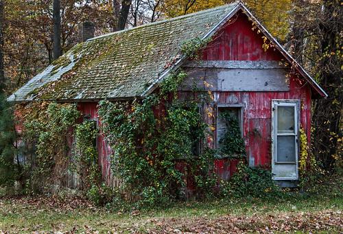 Abandoned in Eden