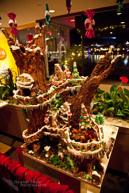 Gingerbread Display - 2014.12.19-9447