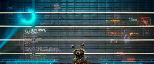 01 Rocket Raccoon 2