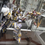 GBWC2014_World_representative_exhibitions-148
