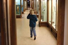 Albin på museum