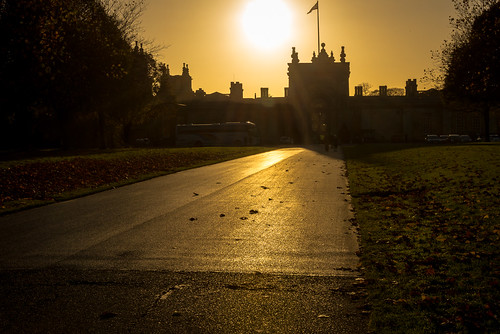 autumn england art palace historic blenheim gill grounds aiweiwei