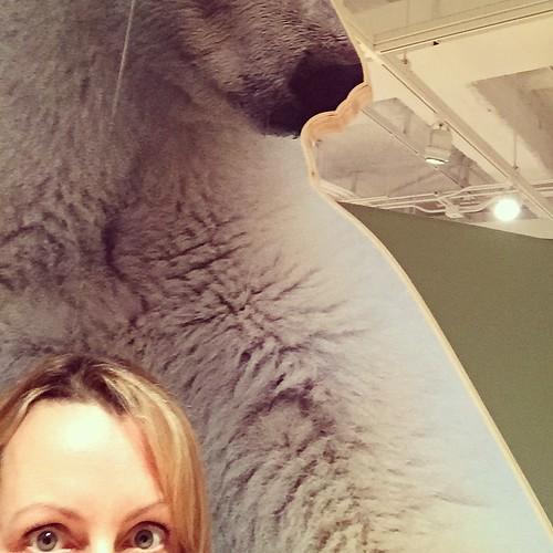 Selfie with polar bear