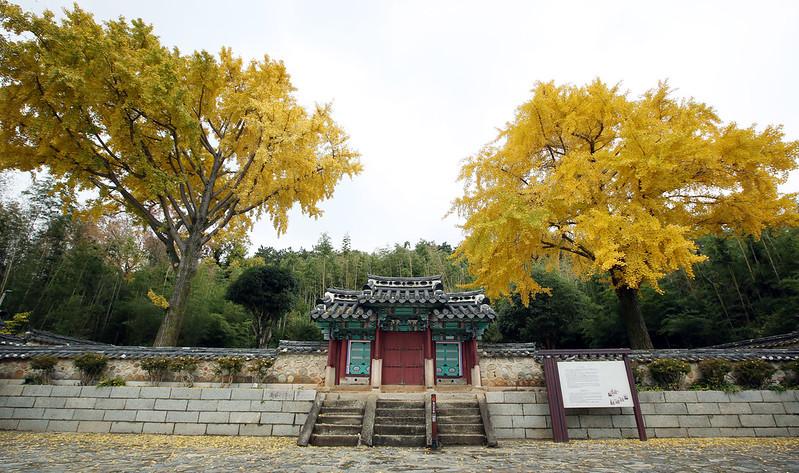 Tongyeongsi_20141125_25