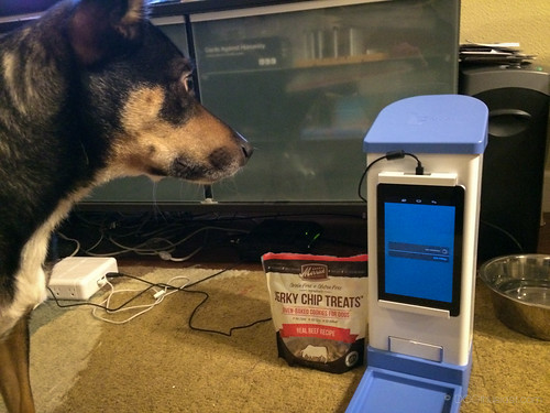 icPooch Internet Treat Dispenser Review