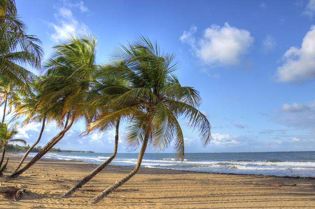 Puerto Rico Beach Scene
