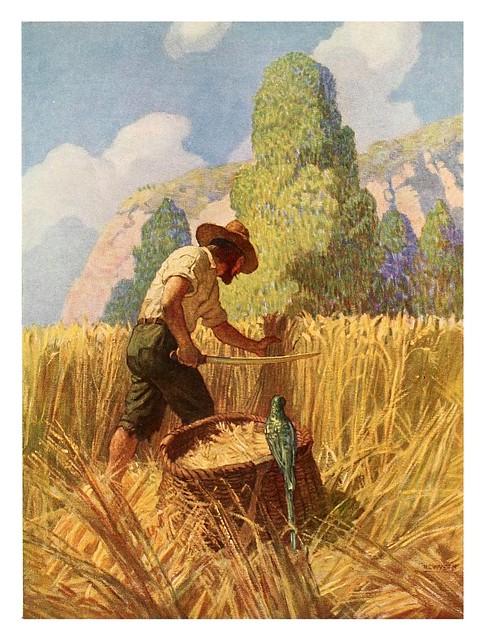 017-Robinson Crusoe-1920- ilustrado por NC Wyeth