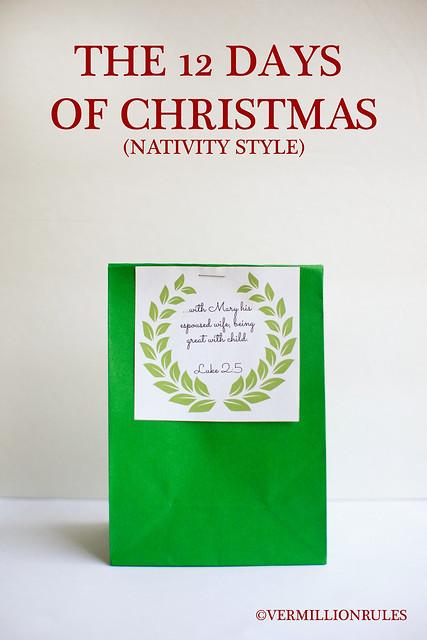 12 days of Christmas - nativity style. An amazing idea with printables from Bethany of Vermillion Rules via www.thirtyhandmadedays.com