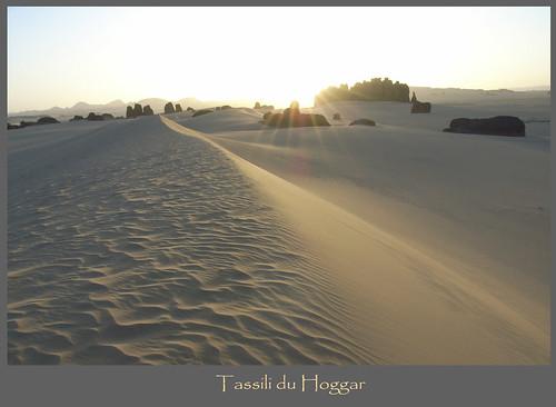 Algeria from life of Raymond Queneau