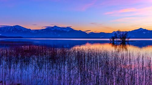 bayern deutschland natur oberbayern alpen landschaft chiemsee abenddämmerung chieming alpenvorland