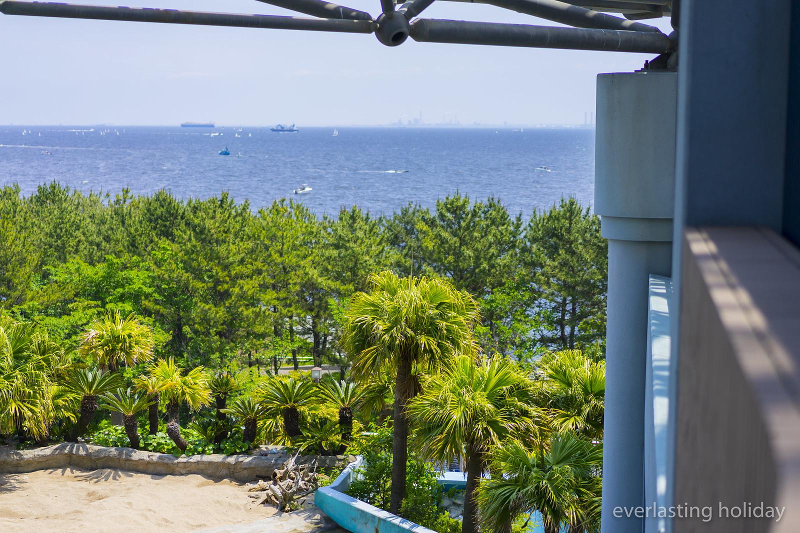 八景島シーパラダイス hakkeijima sea paradise-0001