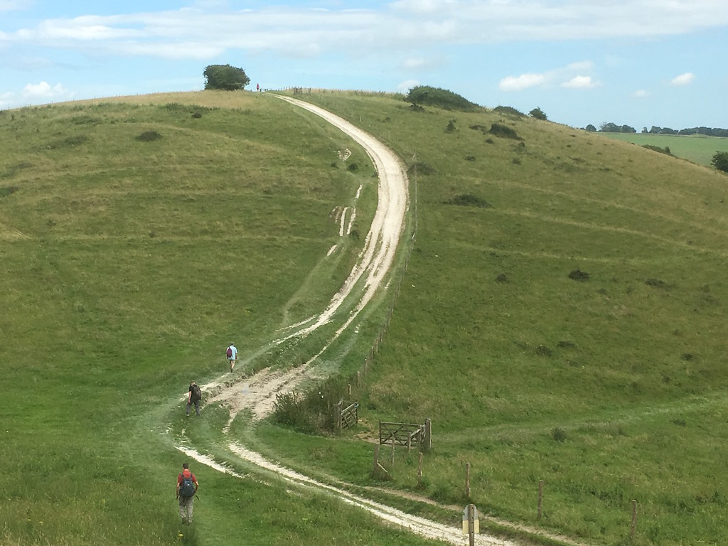 Central section on downs Petersfield to Cocking walk