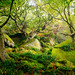 Boulderland by J C Mills Photography