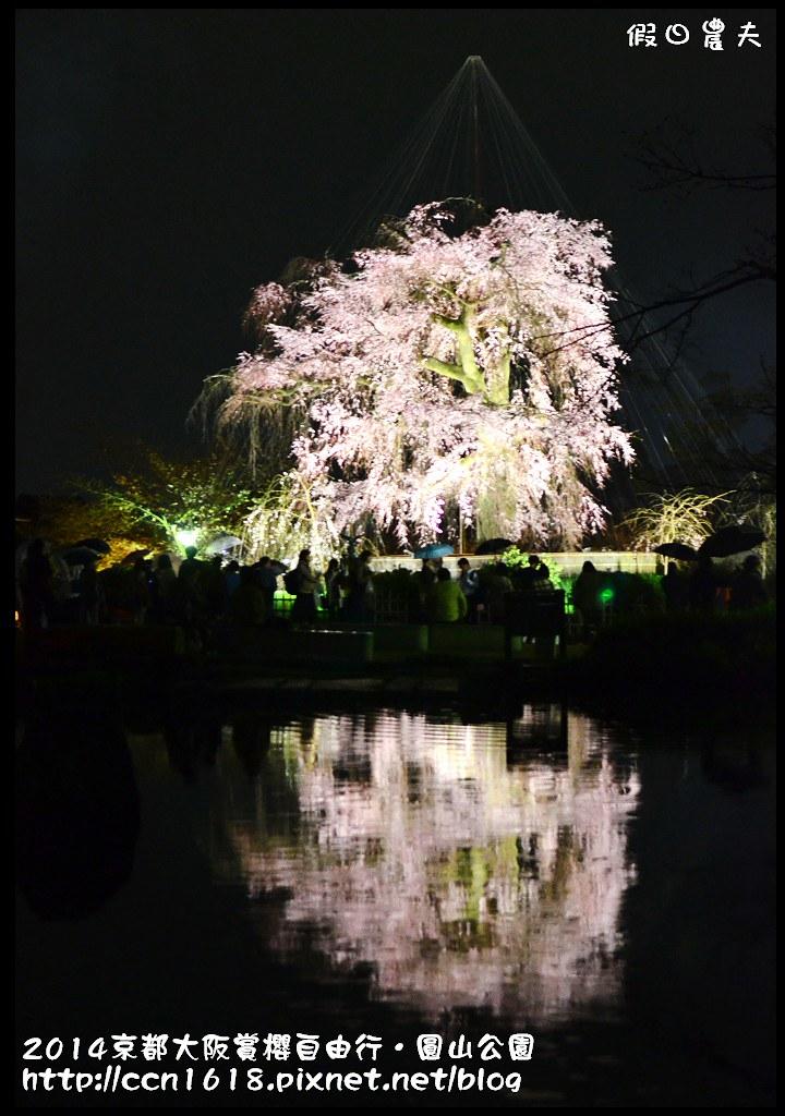 2014京都大阪賞櫻自由行.圓山公園DSC_0686