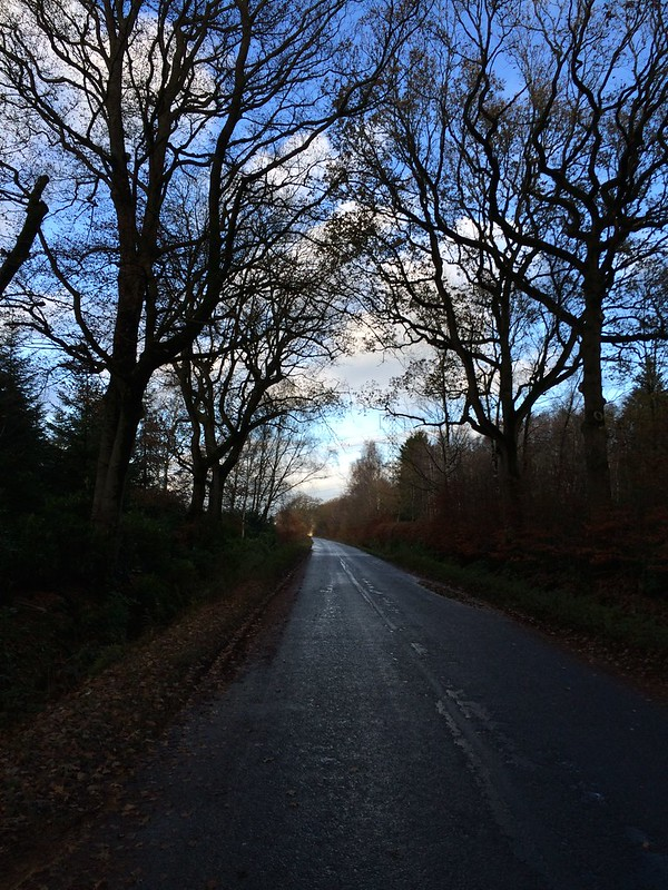 scotland072