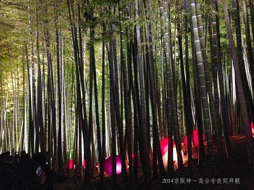 2014京阪神-高台寺夜間拜觀9481_001