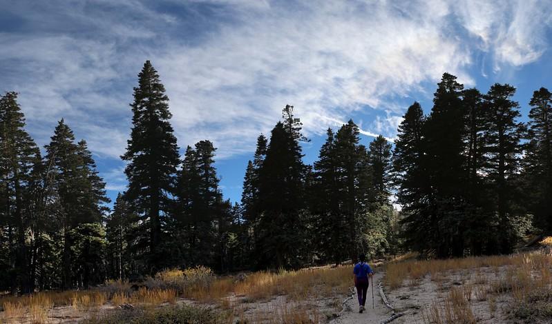 Hiking back to camp again in Tamarack Valley